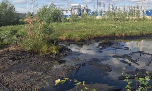 Вне зависимости от природы происхождения этого загрязнения было принято решение о его ликвидации
