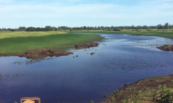 Зарыбление магистралей Обь-Иртышского бассейна «Самотлорнефтегаз» организует в рамках программы по восстановлению биоресурсов