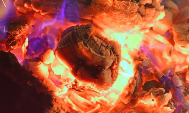 К счастью, пожара удалось избежать, поскольку взрыв произошел без горения