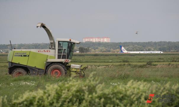 Ближайшие полигон находится далеко и уже не функционирует, заявили в Минэкологии региона