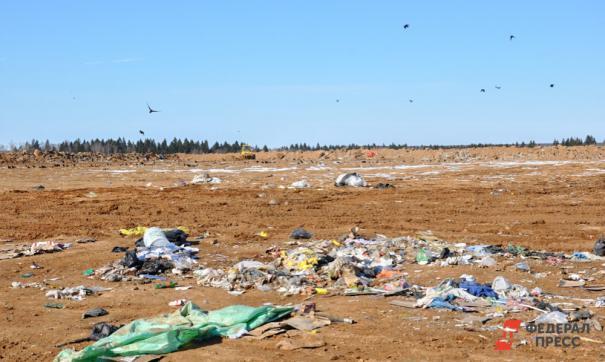 Эко-активисты собираются проверить полигон