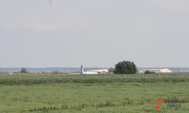 Самолет «Уральских авиалиний» совершил аварийную посадку на кукурузном поле