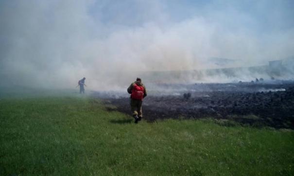 Стало известно, как лесные пожары влияют на здоровье