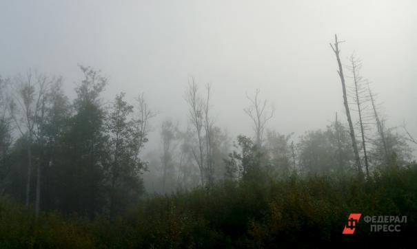 Якутию затянуло дымом от лесных пожаров
