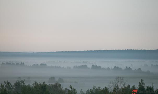 В Якутии стабилизируется ситуация с лесными пожарами