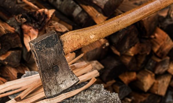 Возбуждены уголовные дела о незаконной рубке леса