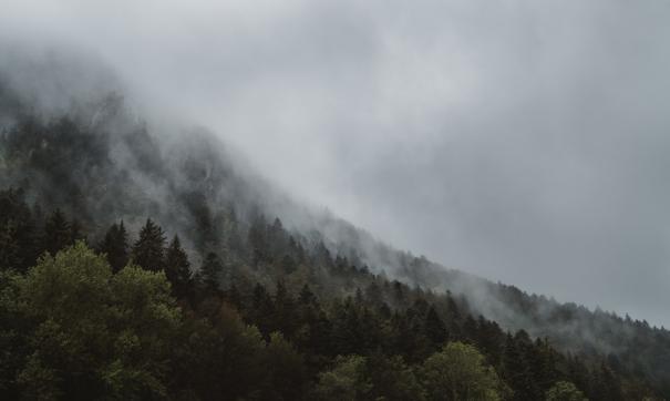 Вся территория, по контуру которой наблюдается горящий огонь, считается территорией пожара