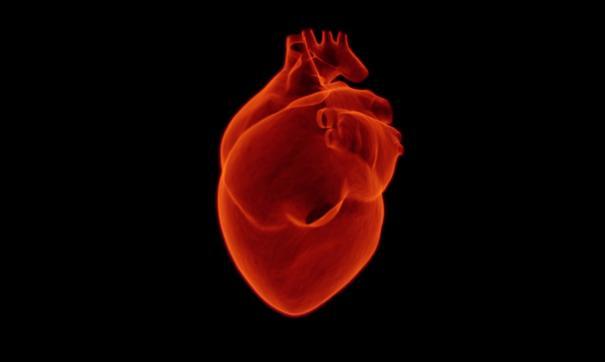 Биоматериал может улучшить работу сердца после инфаркта миокарда