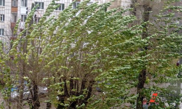 В Челябинске кратковременный шквалистый ветер прошёл со скоростью до 26 м/с