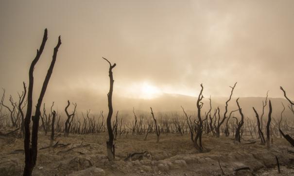 Климатический апокалипсис.