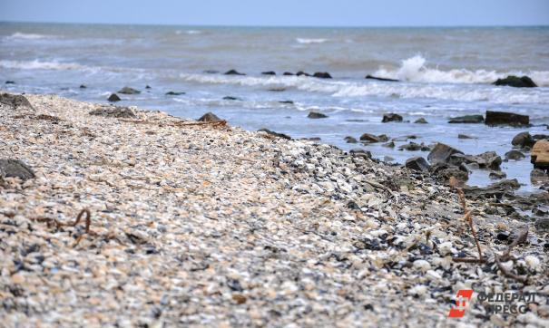 В Амурском заливе неизвестный катер потопил частную яхту