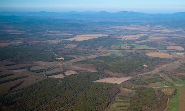 Лесовосстановлением в Приморском крае занимаются постоянно.