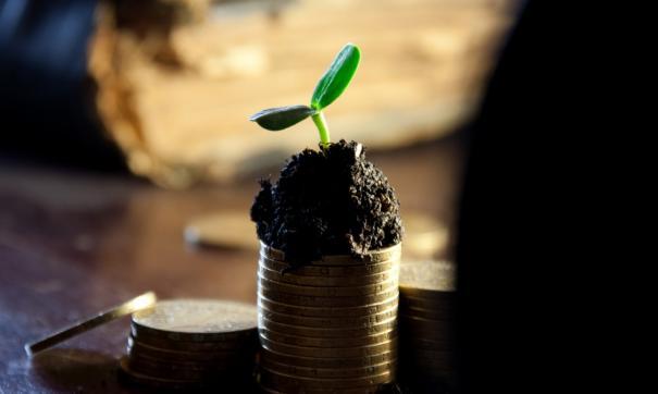 Городской бюджет недополучил десятки миллионов рублей