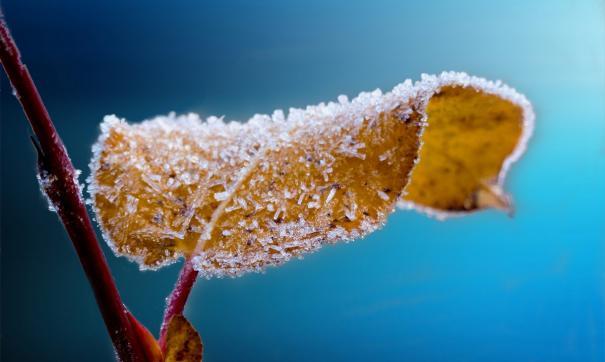 Синоптики предупреждают о заморозках и одновременно о пожароопасности