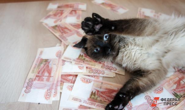 Аналитики выяснили, какие регионы любят «живые» деньги