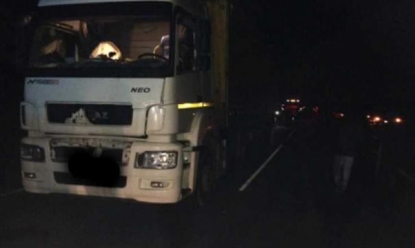 КамАЗ насмерть сбил двух человек в Пензенской области