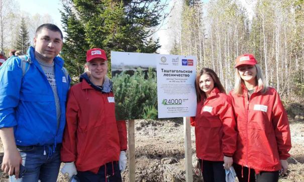 Федеральный экопроект «Подари лес другу!» помогает восстановлению лесов в России уже на протяжении 5 лет