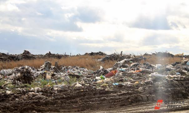 В Березовском директор управкомпании сбрасывал в лес отходы IV класса опасности