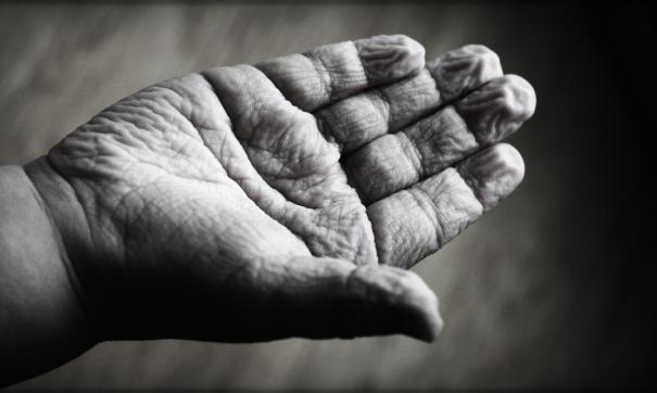 Ученые раскрыли главный механизм продления жизни