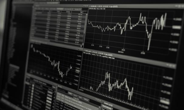 Экспертиза установила цену ведущих акций по делу Калви