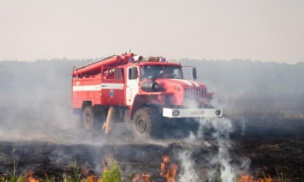Жители Тары сообщают, что поджигателей так и не нашли