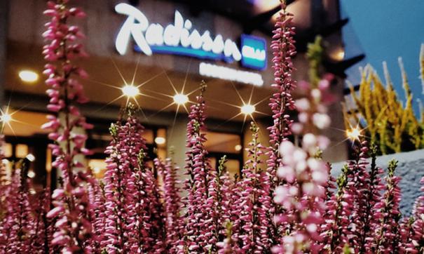Чиновники городской администрации сообщили, что отель Radisson не будут возводить в окрестностях сквера Сахарова