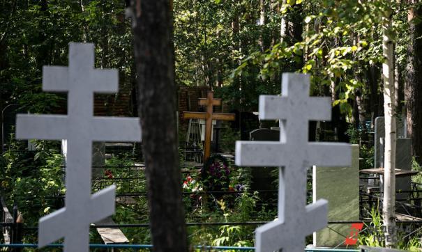 Следователи уже начали проверку по сообщению о бесхозных могилах