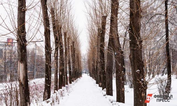 В декабре Россию ждет аномальная погода