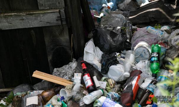 После мусорного коллапса регоператором, отвечающим за вывоз мусора в городе, стала компания ЦКС