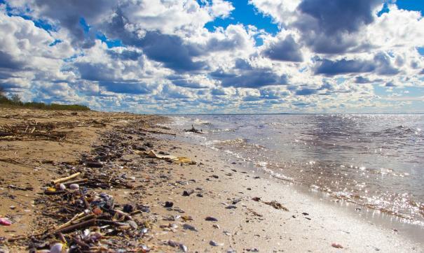 Гринпис указал на главный загрязнитель океана