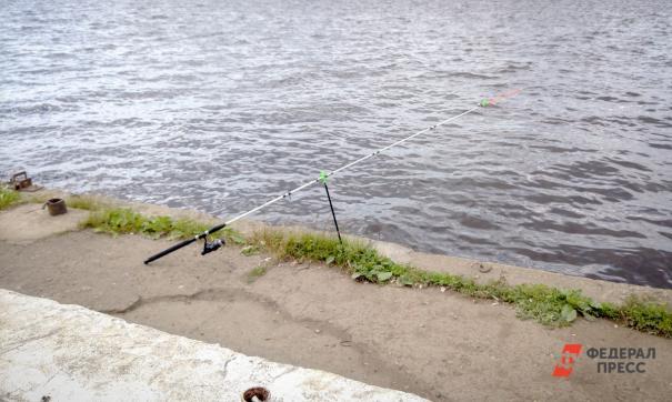 Рыбацкая удочка