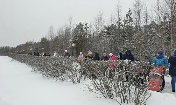 Сургутяне протестуют против вырубки лесопарка. На этом месте планируется построить автовокзал