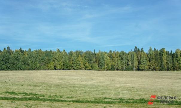 При правительстве Оренбургской области создадут экологическую комиссию
