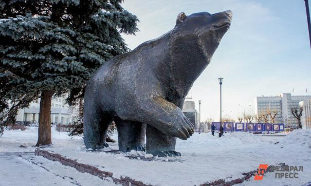 Более половины россиян назвали медведя символом страны