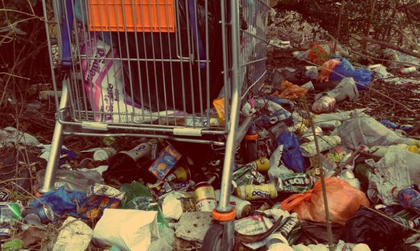 Из-за залежей мусора в городе ввели режим ЧС