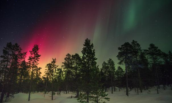 На Ямале можно будет приобрести «абонемент» на северное сияние