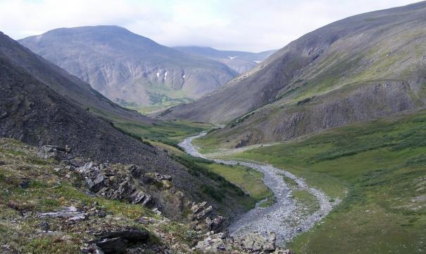 На Ямале найден новый ювелирно-поделочный камень – райизит