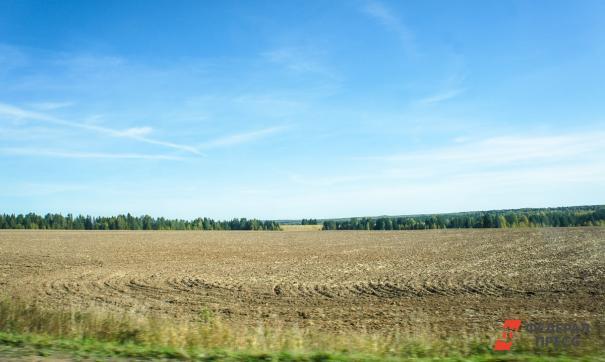 Всего в области пустует около 680 тысяч гектар земель сельскохозяйственного назначения
