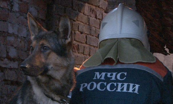 В Белгородской области завершена спасательная операция на месте обрушения стены дома