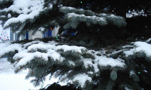 В Новый год будет относительно тепло и снежно