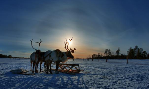 В Арктике без интернета тяжело