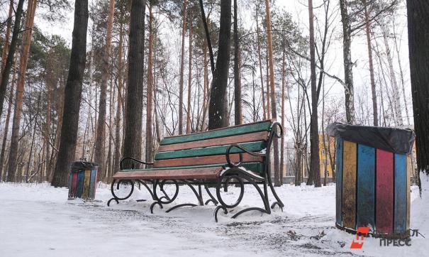 Жители Барнаула хотят восстановить парк, а не вырубать деревья