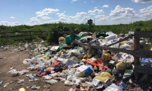 Экологии нанесен ущерб на 170 миллионов рублей