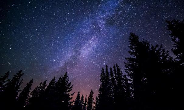 За минуту можно будет увидеть по одному-два метеорита
