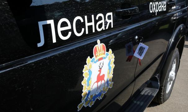 Нижегородские лесники получат две сотни единиц новой спецтехники в этом году