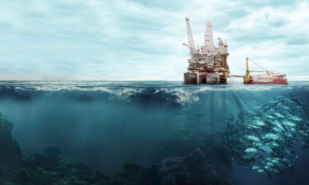 Результаты исследований лягут в основу природоохранной деятельности компании в Арктике