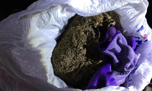 В Красноуфимске инспекторы ГИБДД задержали автомобилиста с рюкзаком  марихуаны