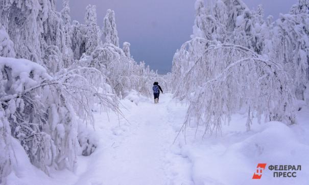 Государственный природный заповедник «Денежкин Камень» хотят преобразовать в национальный парк.