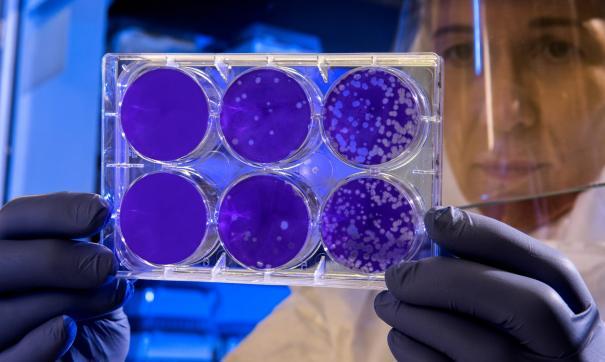 В Китае бушует эпидемия коронавируса