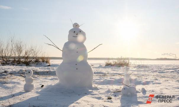 Японские эксперты раскрыли причину бесснежных российских зим